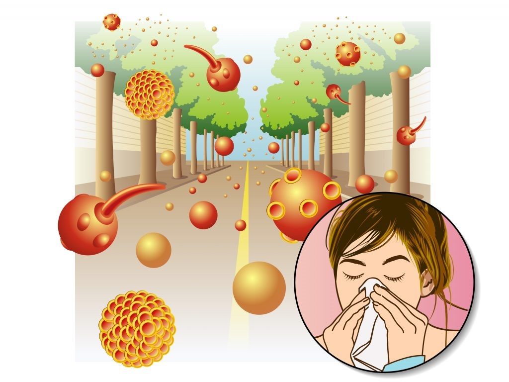 pollen count causes